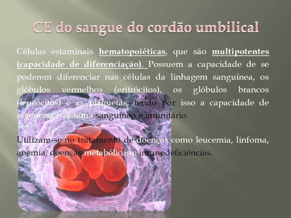 CE do sangue do cordão umbilical