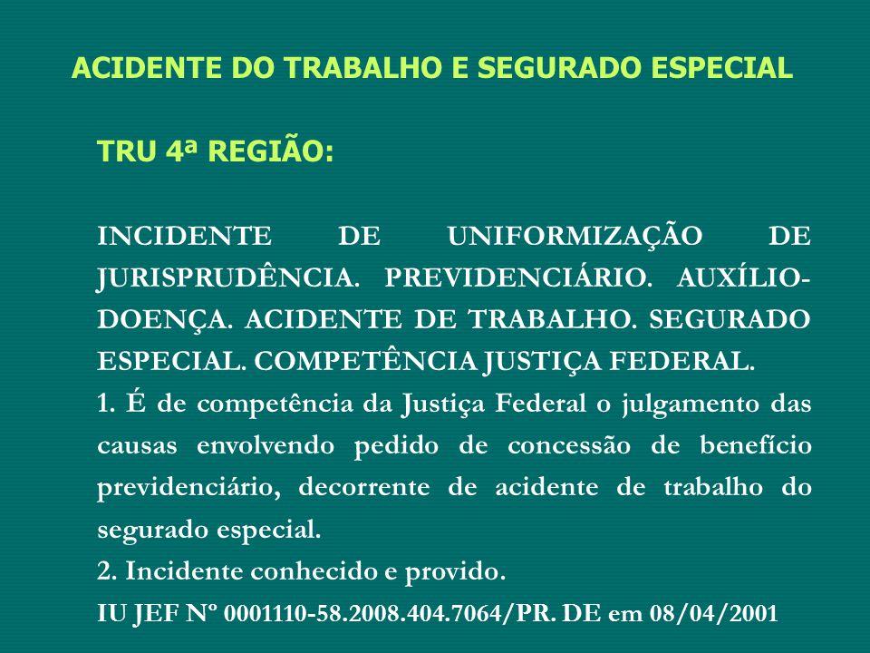ACIDENTE DO TRABALHO E SEGURADO ESPECIAL