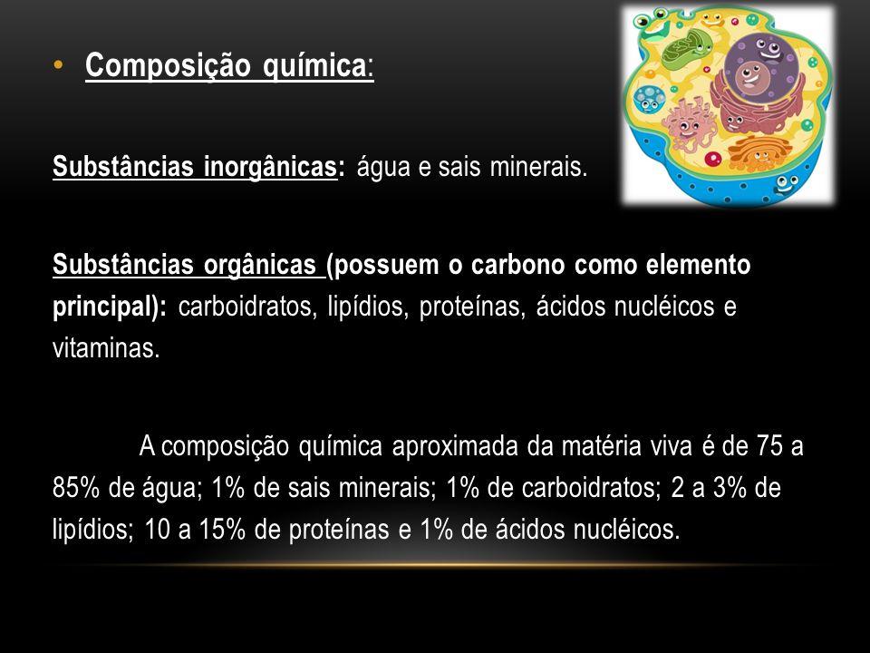 Composição química: Substâncias inorgânicas: água e sais minerais.