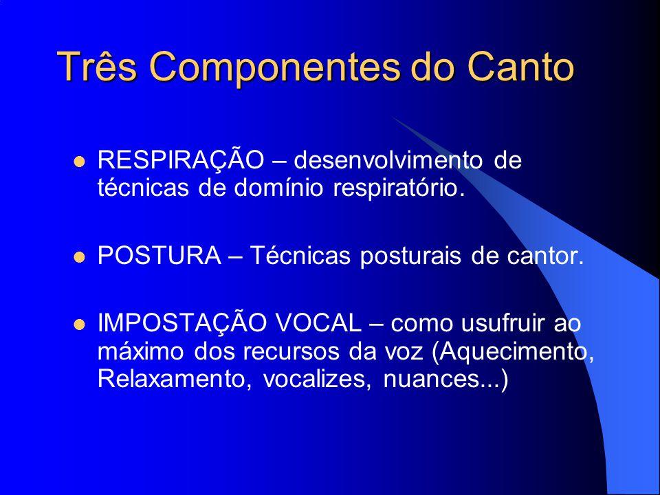 Três Componentes do Canto