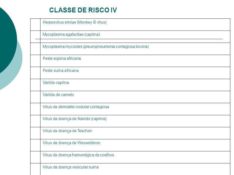 CLASSE DE RISCO IV Herpesvírus simiae (Monkey B vírus)