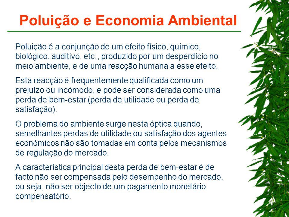 Poluição e Economia Ambiental
