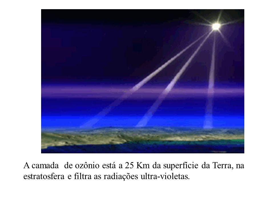 A camada de ozônio está a 25 Km da superfície da Terra, na estratosfera e filtra as radiações ultra-violetas.