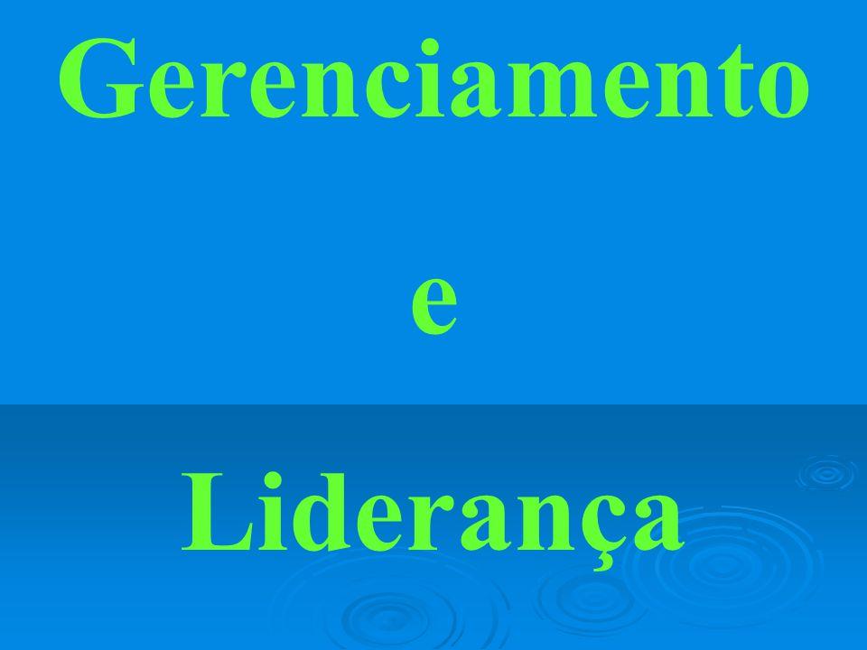 Gerenciamento e Liderança