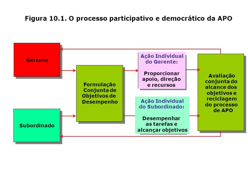 Figura 10.1. O processo participativo e democrático da APO
