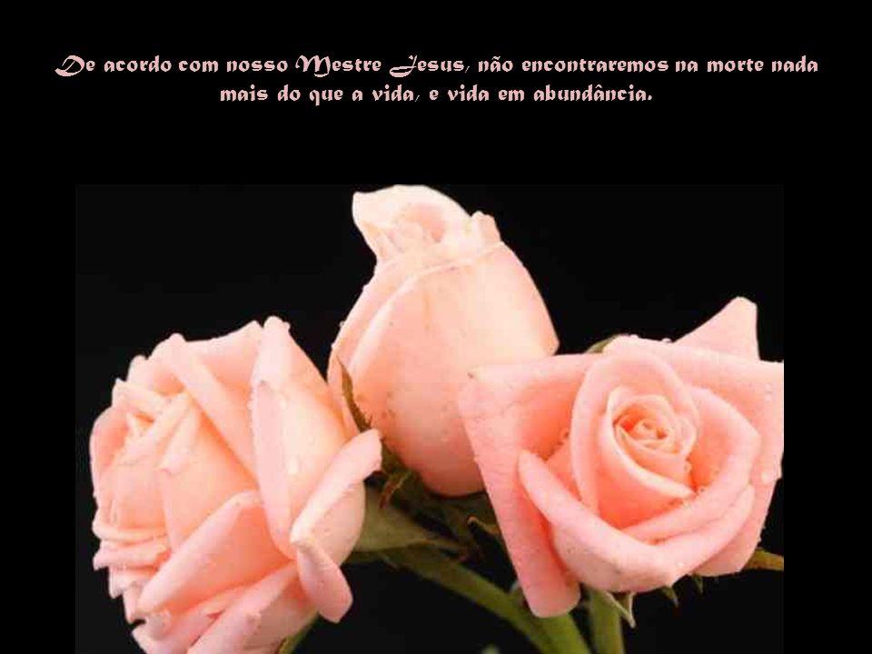 De acordo com nosso Mestre Jesus, não encontraremos na morte nada mais do que a vida, e vida em abundância.