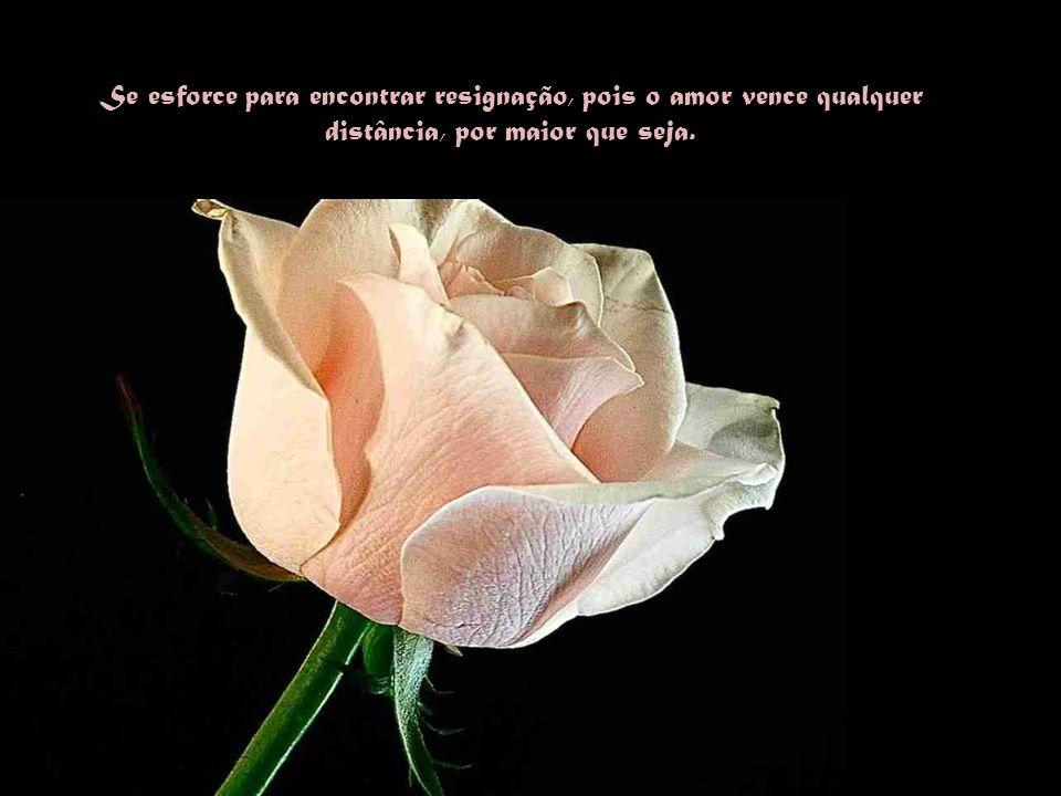 Se esforce para encontrar resignação, pois o amor vence qualquer distância, por maior que seja.