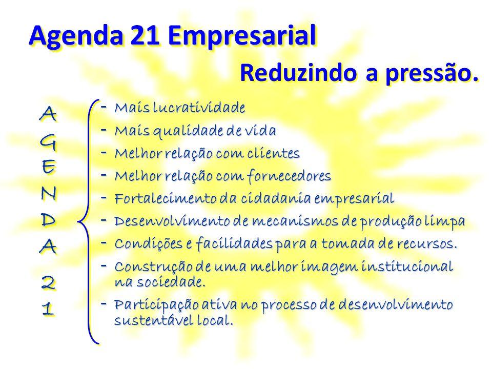 Agenda 21 Empresarial Reduzindo a pressão. AGENDA Mais lucratividade
