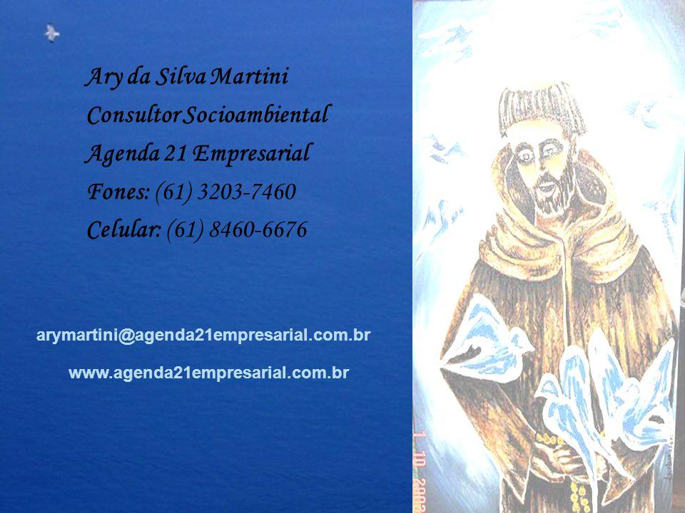 Consultor Socioambiental Agenda 21 Empresarial Fones: (61) 3203-7460