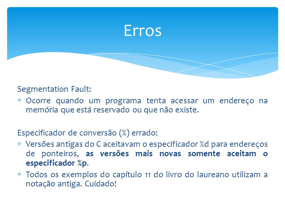 Erros Segmentation Fault: