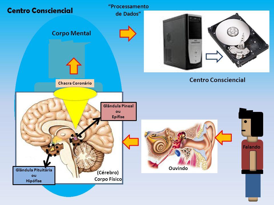 Centro Consciencial Corpo Mental Centro Consciencial Processamento