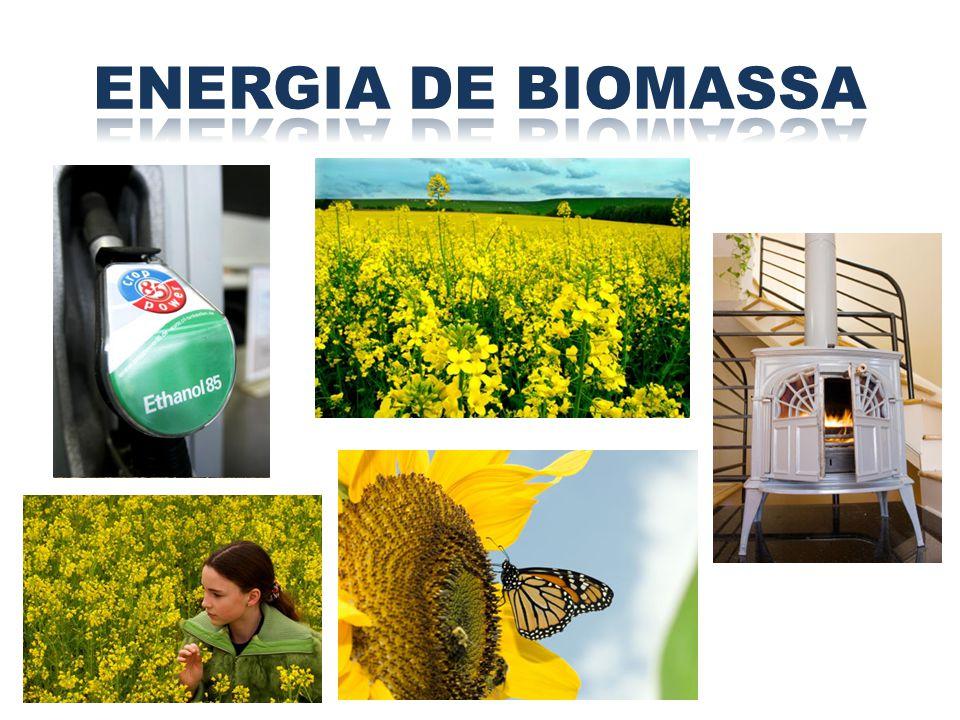 ENERGIA DE BIOMASSA