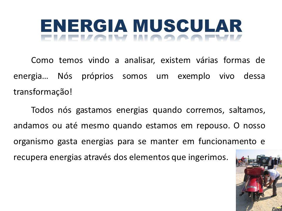 ENERGIA MUSCULAR Como temos vindo a analisar, existem várias formas de energia… Nós próprios somos um exemplo vivo dessa transformação!