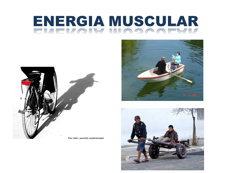 ENERGIA MUSCULAR