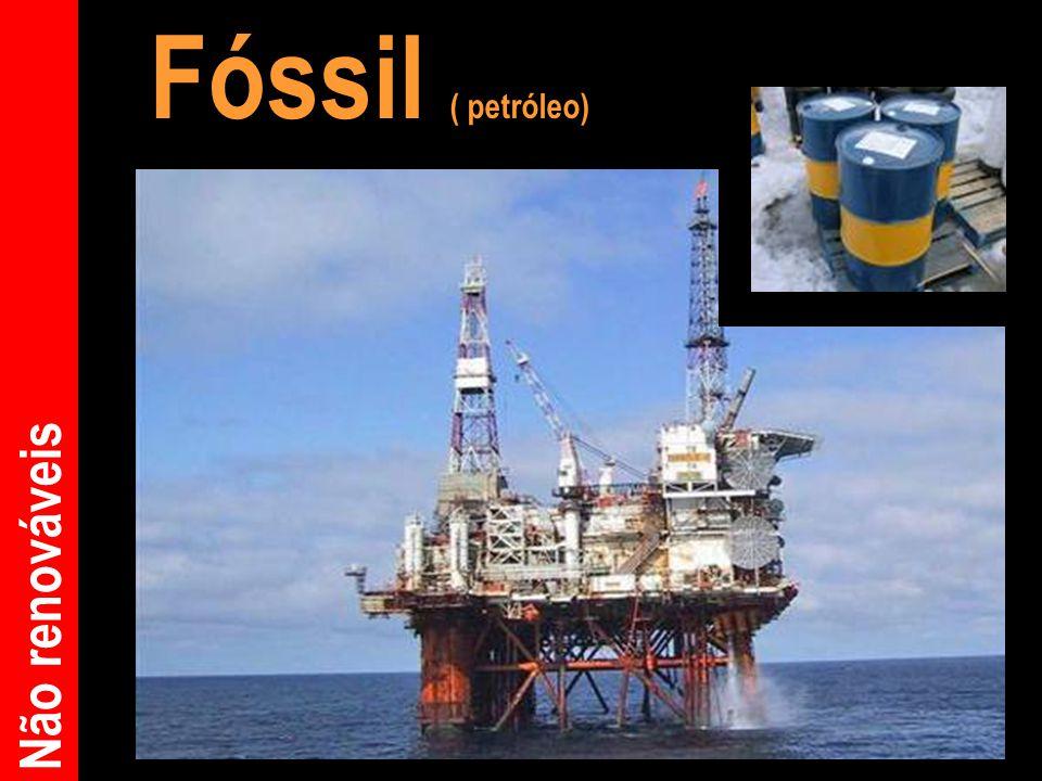 Fóssil ( petróleo) Não renováveis
