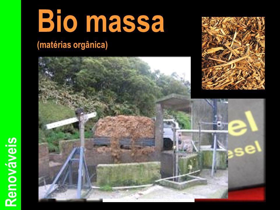 Bio massa (matérias orgânica) Renováveis