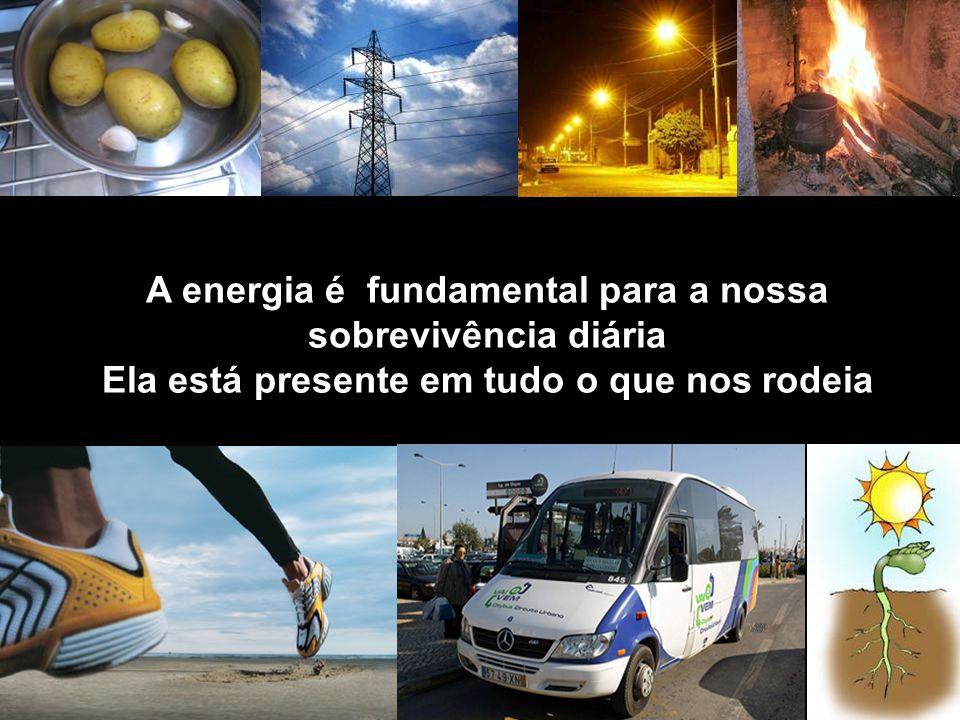 A energia é fundamental para a nossa sobrevivência diária