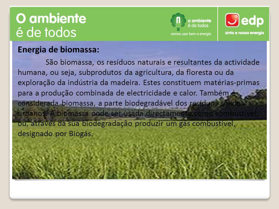 Energia de biomassa: São biomassa, os resíduos naturais e resultantes da actividade humana, ou seja, subprodutos da agricultura, da floresta ou da exploração da indústria da madeira.