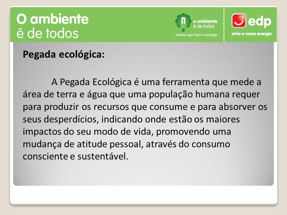 Pegada ecológica: