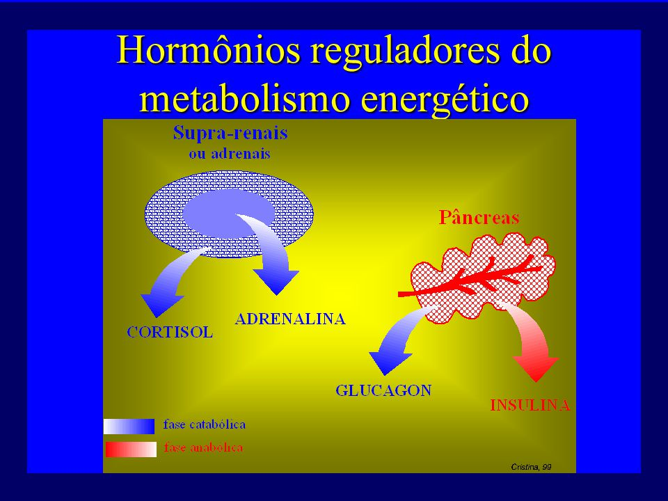 Hormônios reguladores do metabolismo energético