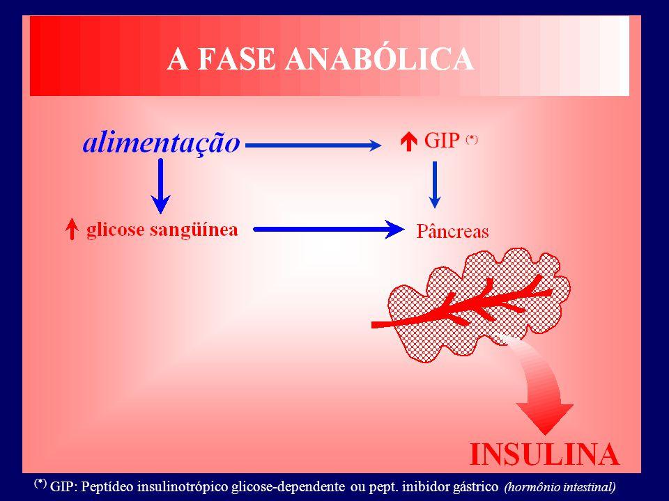  GIP (*) (*) GIP: Peptídeo insulinotrópico glicose-dependente ou pept.