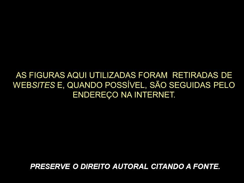 PRESERVE O DIREITO AUTORAL CITANDO A FONTE.