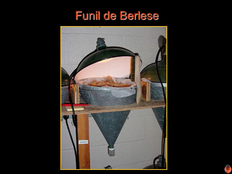 Funil de Berlese