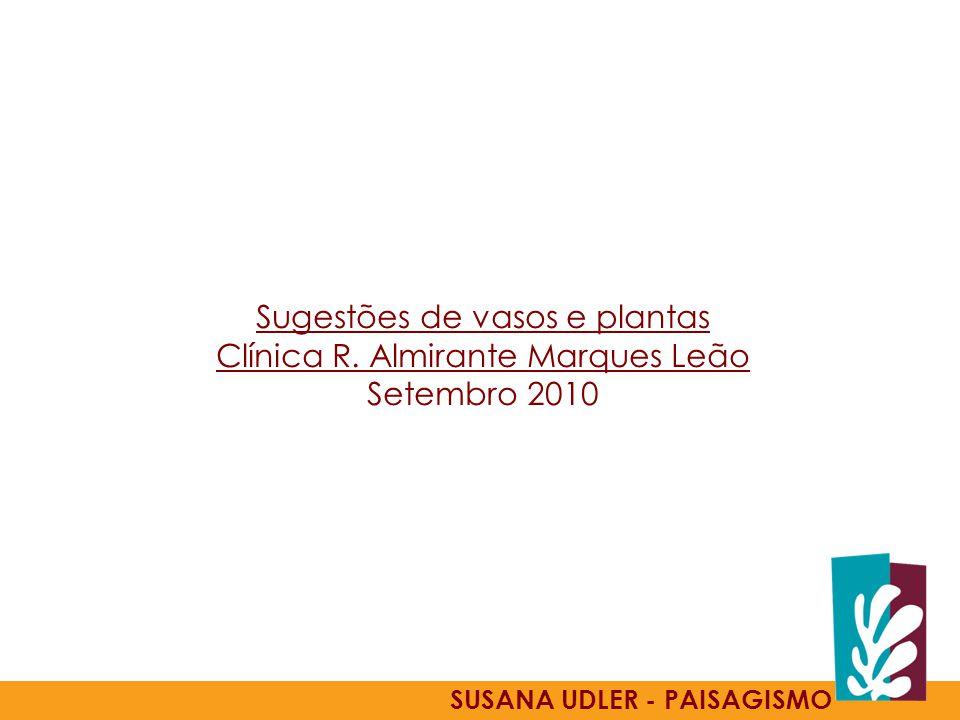 Sugestões de vasos e plantas Clínica R. Almirante Marques Leão