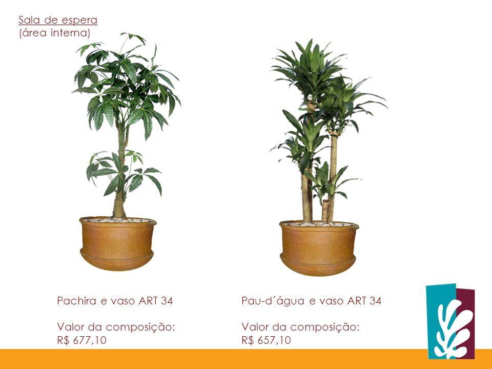 Sala de espera (área interna) Pachira e vaso ART 34. Valor da composição: R$ 677,10. Pau-d´água e vaso ART 34.
