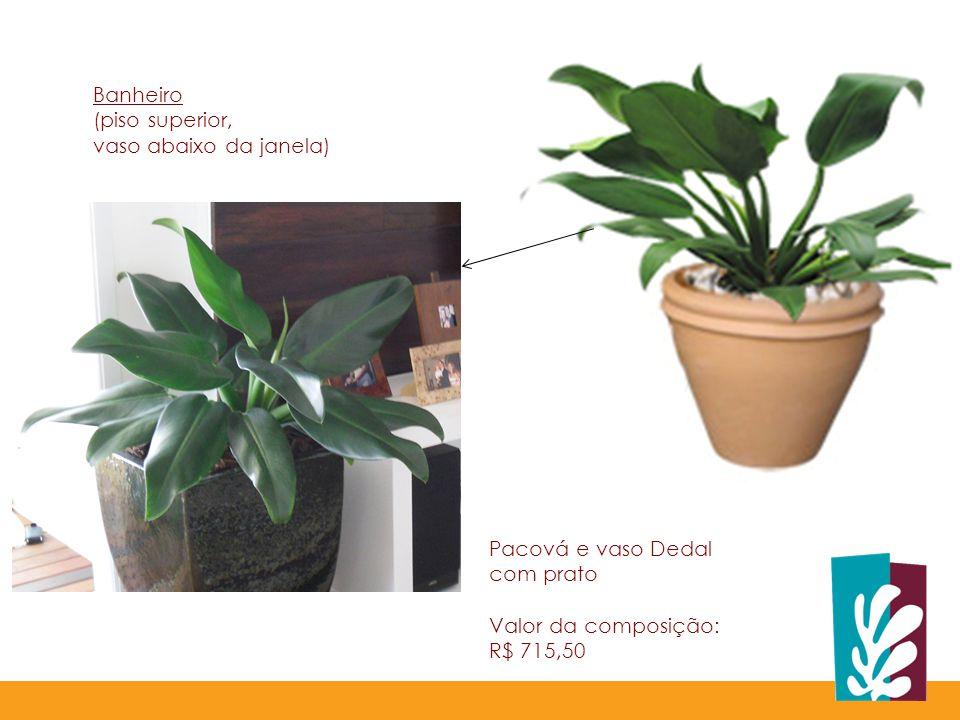 Banheiro (piso superior, vaso abaixo da janela) Pacová e vaso Dedal. com prato. Valor da composição: