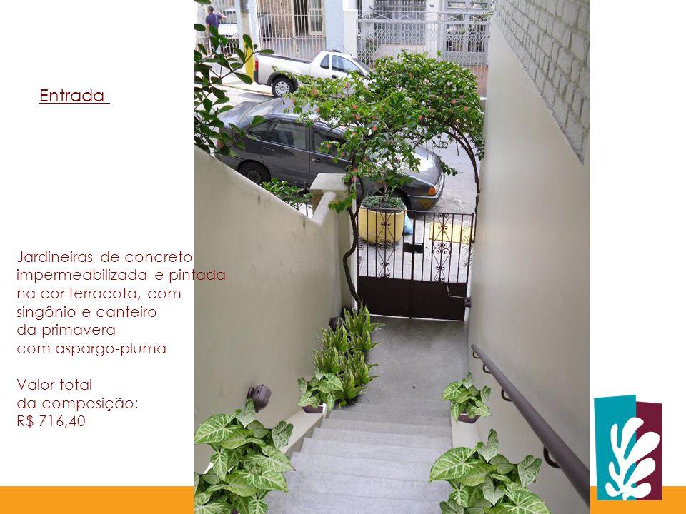 Entrada Jardineiras de concreto impermeabilizada e pintada na cor terracota, com singônio e canteiro.