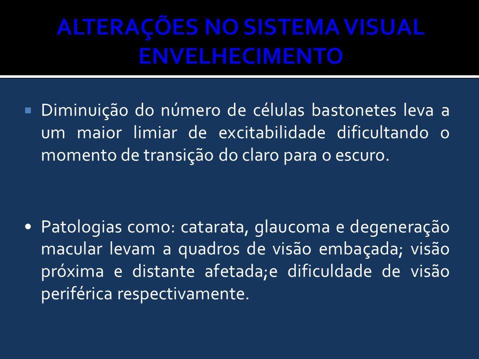 Alterações no Sistema Visual ENVELHECIMENTO