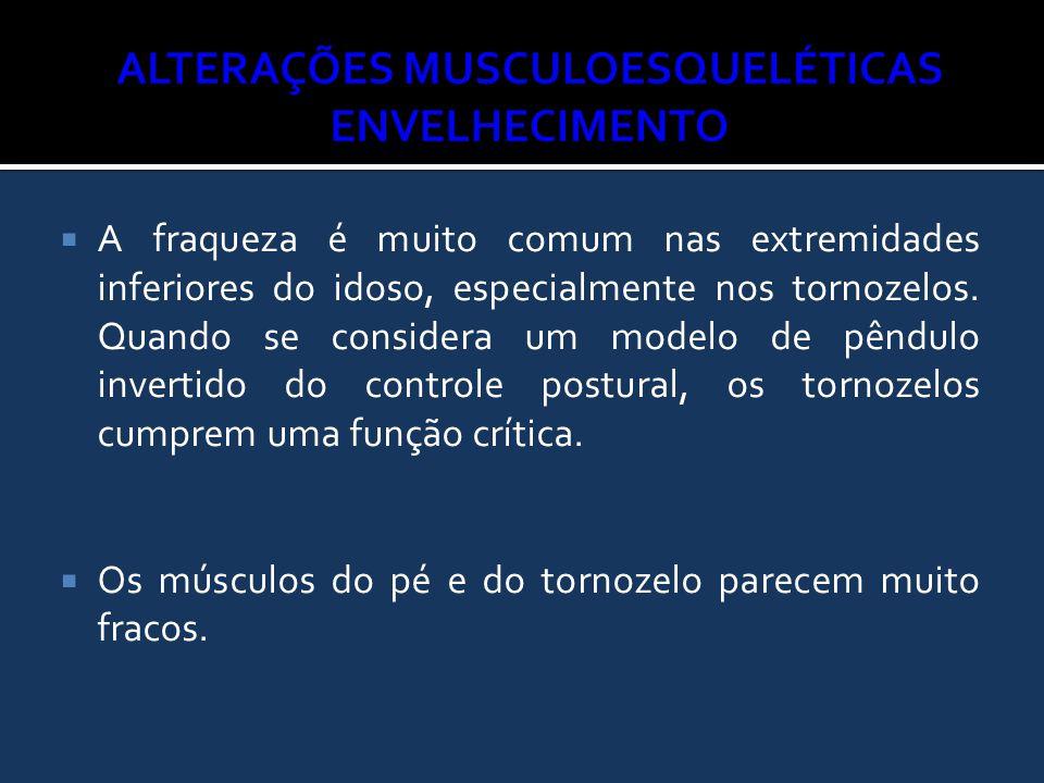 Alterações Musculoesqueléticas envelhecimento