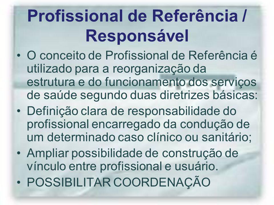 Profissional de Referência / Responsável