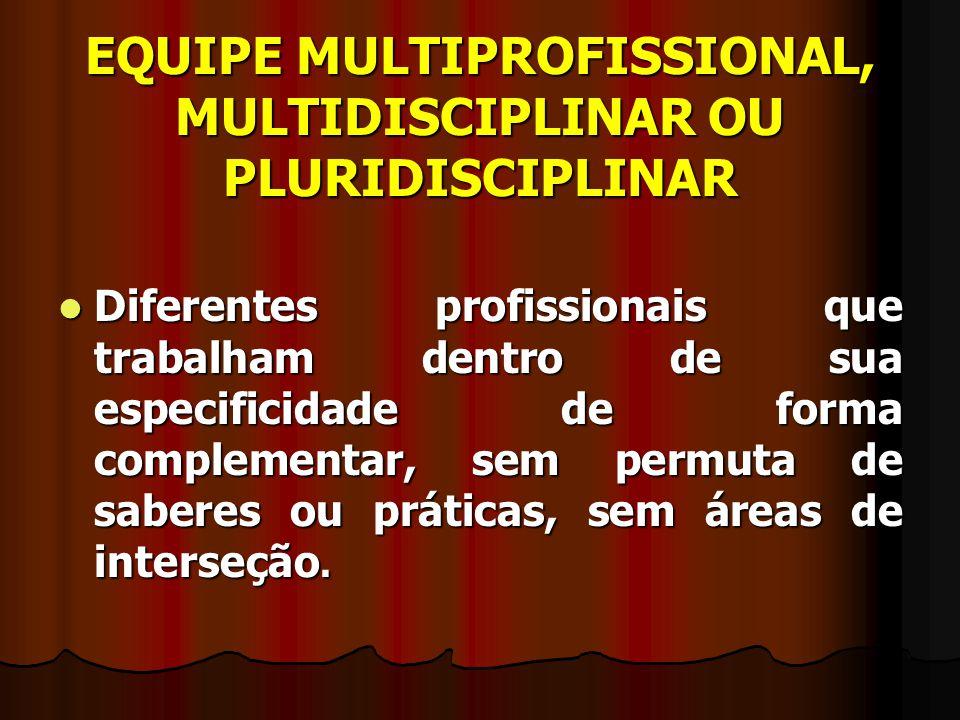 EQUIPE MULTIPROFISSIONAL, MULTIDISCIPLINAR OU PLURIDISCIPLINAR