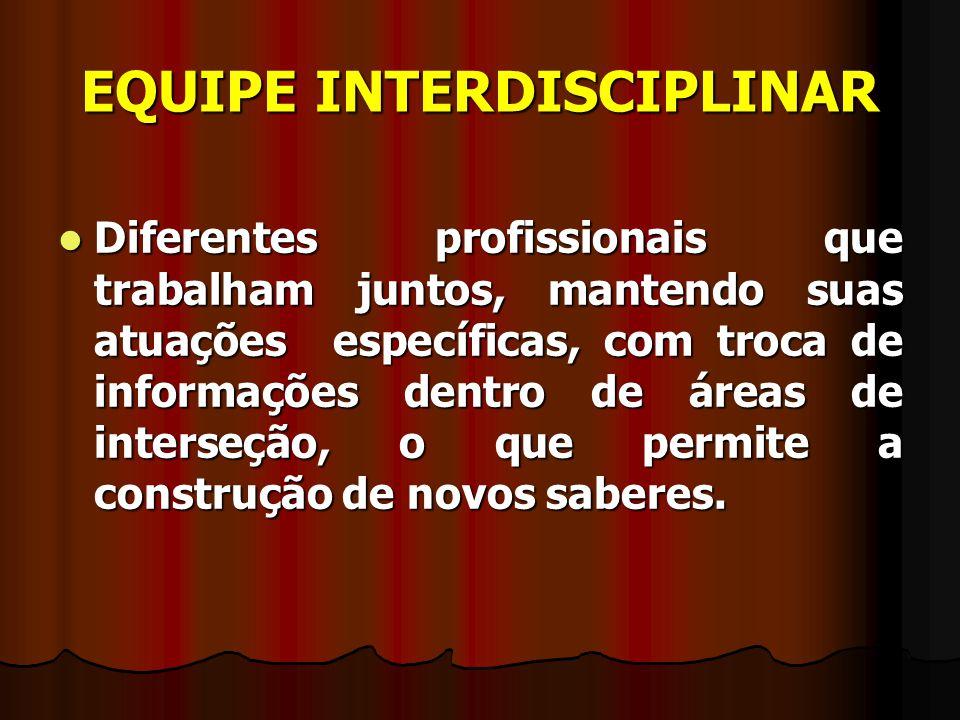 EQUIPE INTERDISCIPLINAR