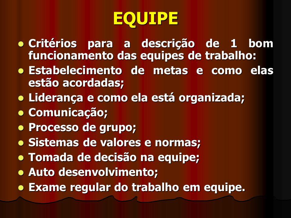 EQUIPE Critérios para a descrição de 1 bom funcionamento das equipes de trabalho: Estabelecimento de metas e como elas estão acordadas;