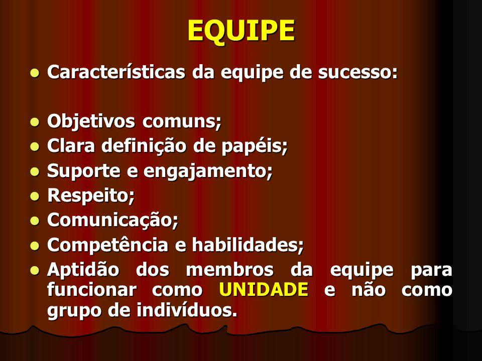 EQUIPE Características da equipe de sucesso: Objetivos comuns;