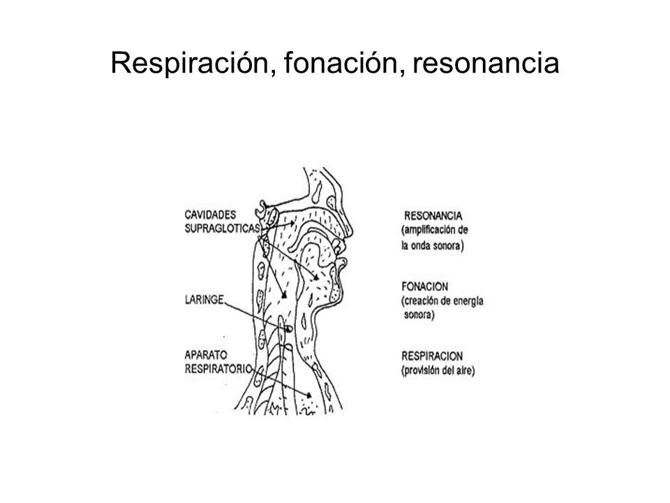 Respiración, fonación, resonancia