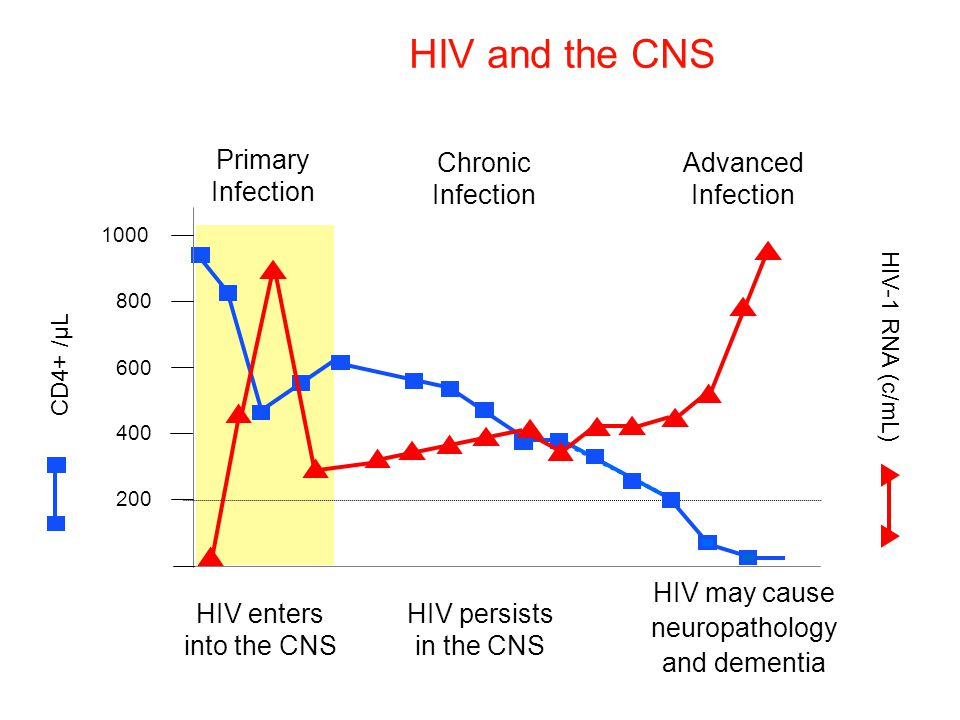HIV and the CNS Primary Infection Chronic Infection Advanced Infection