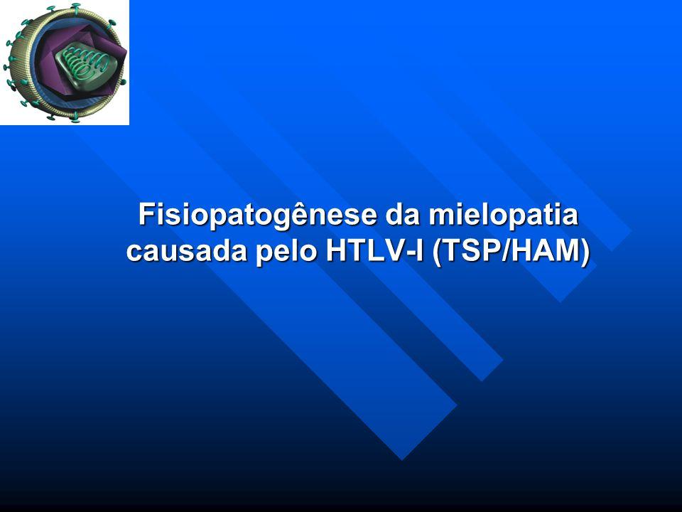 Fisiopatogênese da mielopatia causada pelo HTLV-I (TSP/HAM)