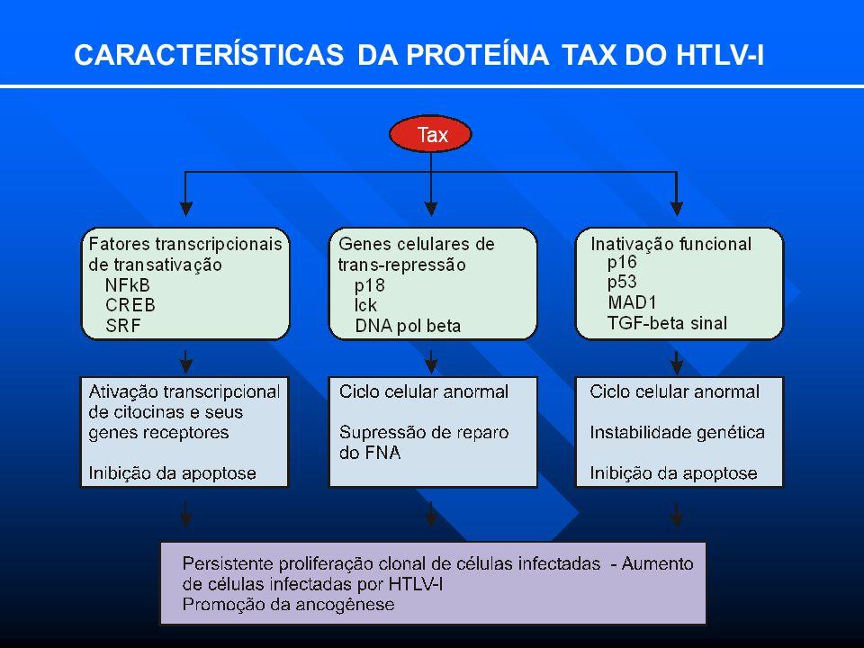 CARACTERÍSTICAS DA PROTEÍNA TAX DO HTLV-I