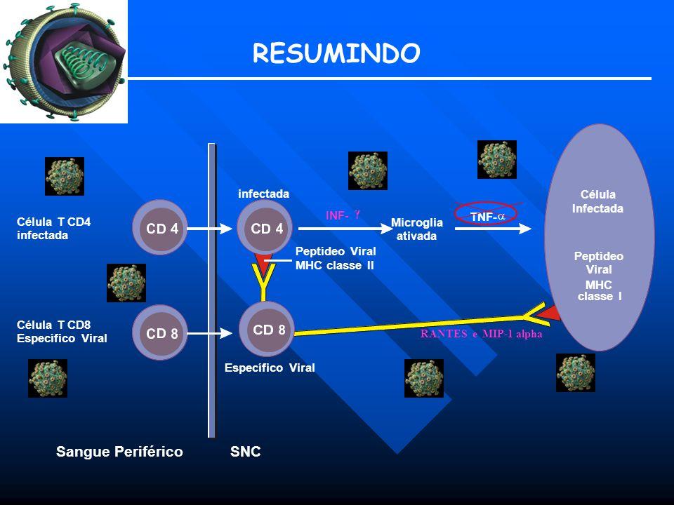 RESUMINDO Sangue Periférico SNC infectada MHC Célula Infectada
