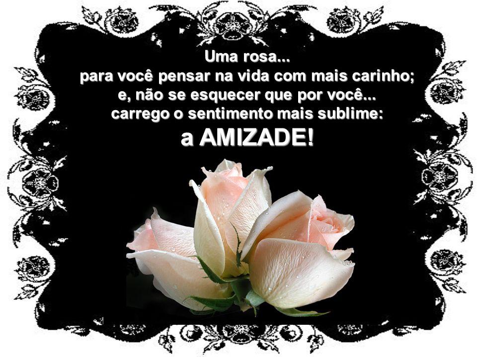 a AMIZADE! Uma rosa... para você pensar na vida com mais carinho;