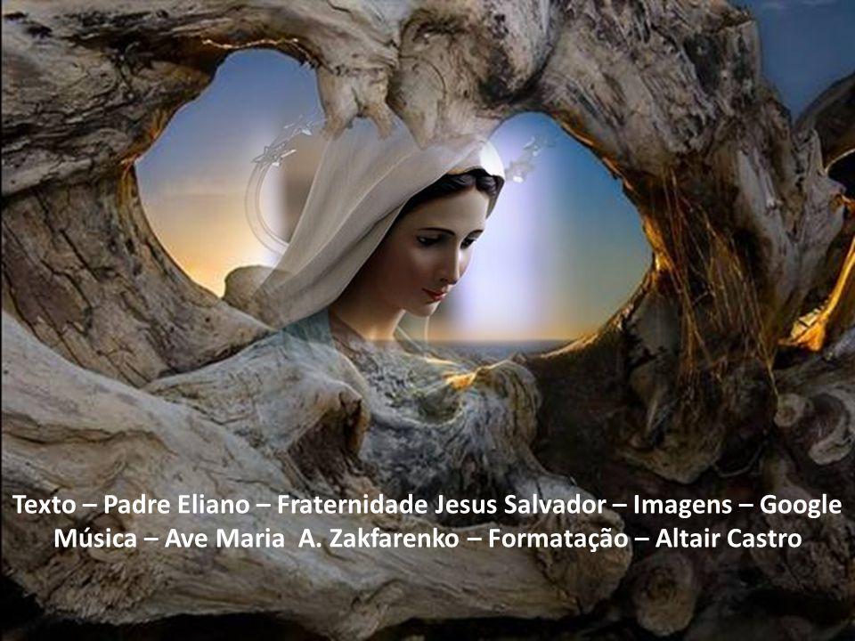 Texto – Padre Eliano – Fraternidade Jesus Salvador – Imagens – Google Música – Ave Maria A.