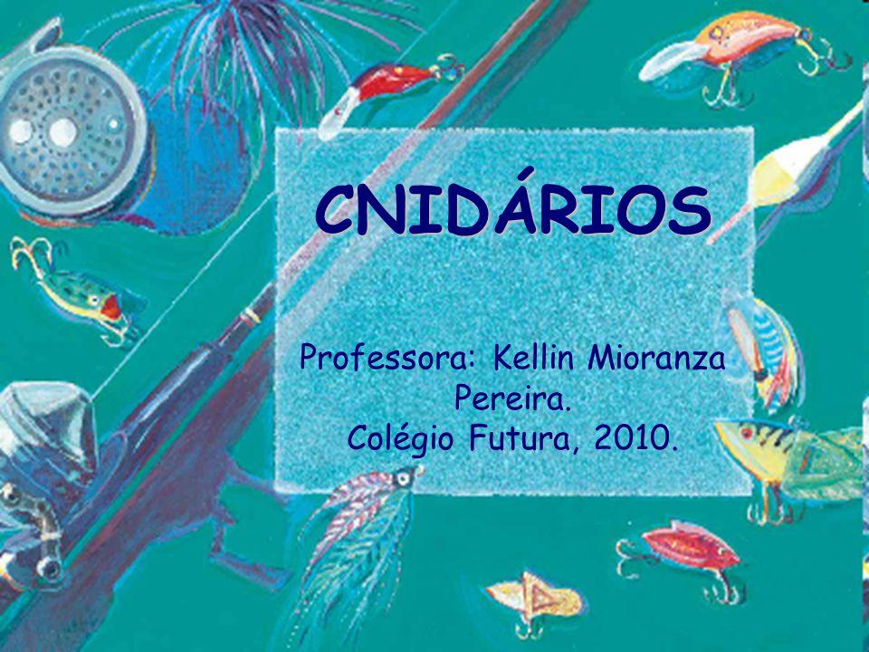Professora: Kellin Mioranza Pereira.