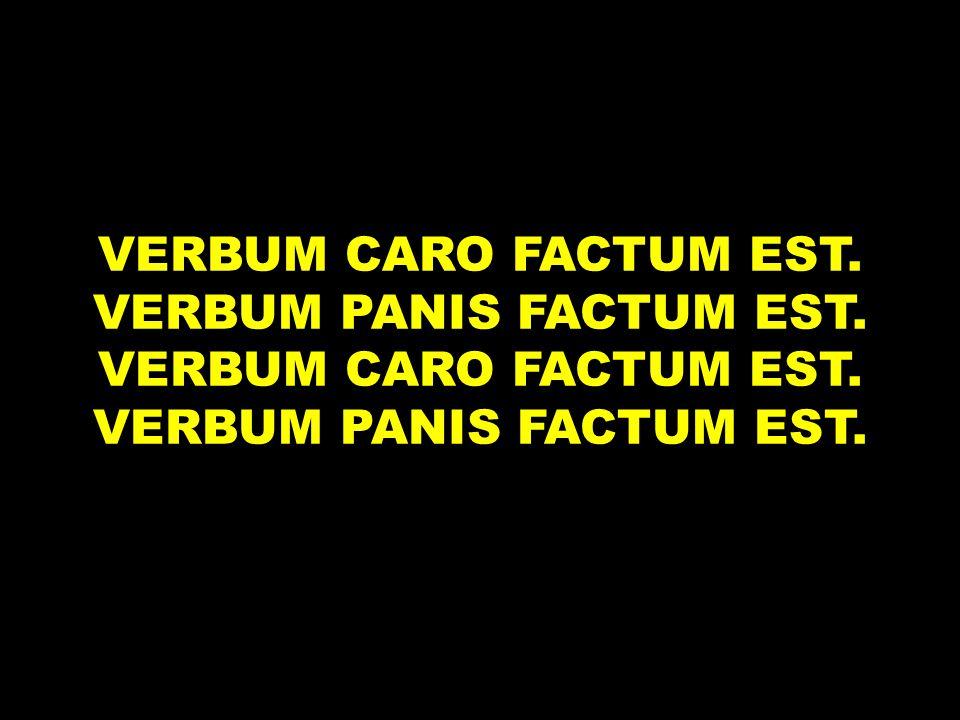 VERBUM CARO FACTUM EST. VERBUM PANIS FACTUM EST. VERBUM CARO FACTUM EST. VERBUM PANIS FACTUM EST.