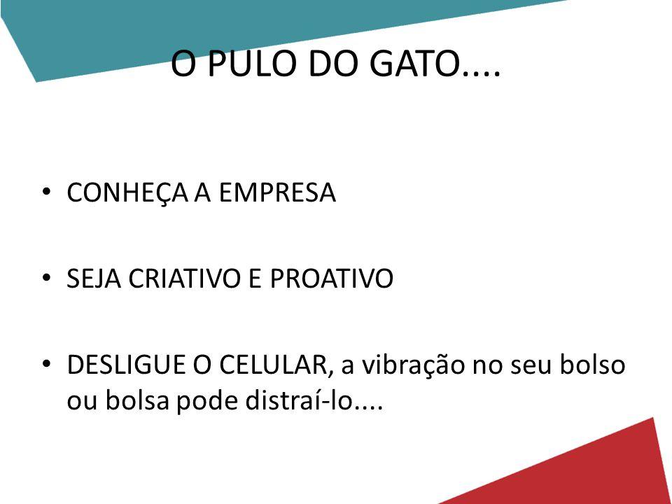 O PULO DO GATO.... CONHEÇA A EMPRESA SEJA CRIATIVO E PROATIVO