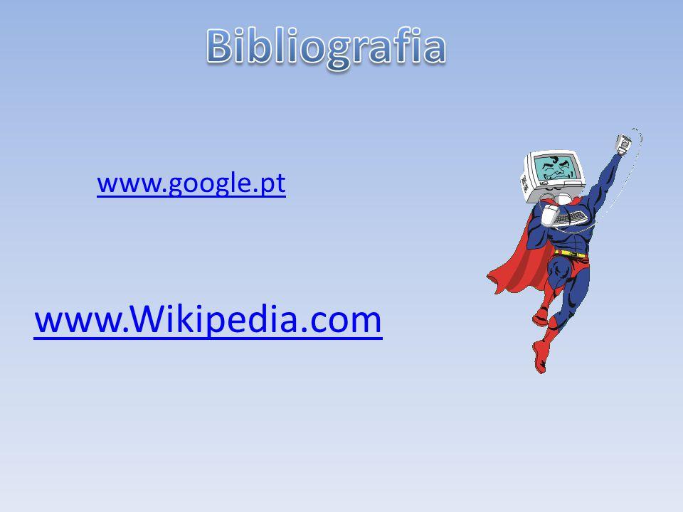 Bibliografia www.google.pt www.Wikipedia.com