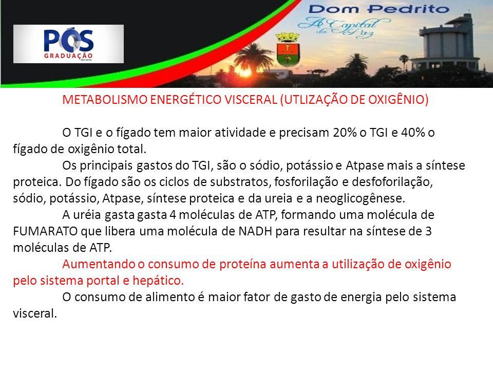 METABOLISMO ENERGÉTICO VISCERAL (UTLIZAÇÃO DE OXIGÊNIO)